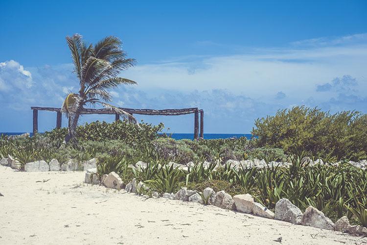 Cozumel, la isla perfecta para los amantes de la naturaleza y el turismo ecológico