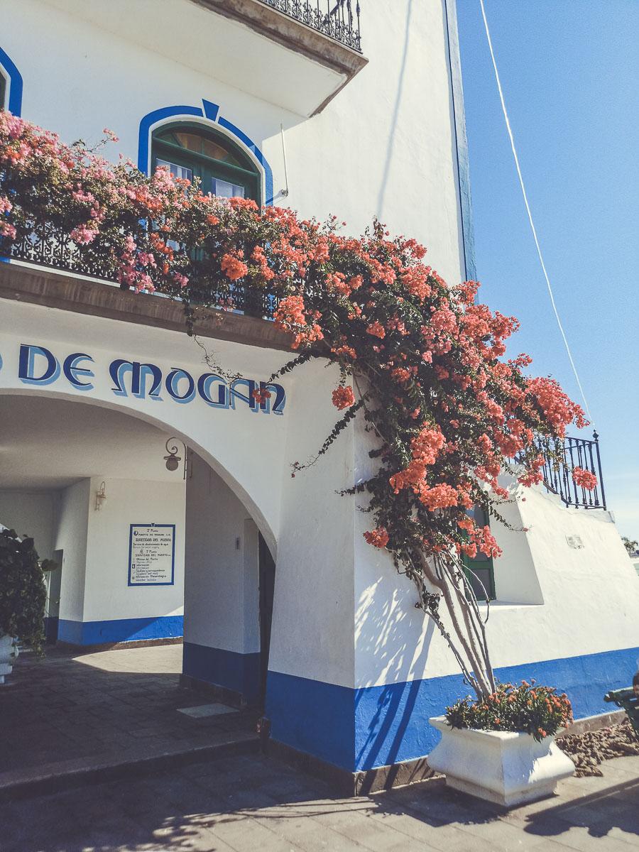 Un paseo por el Puerto de Mogán