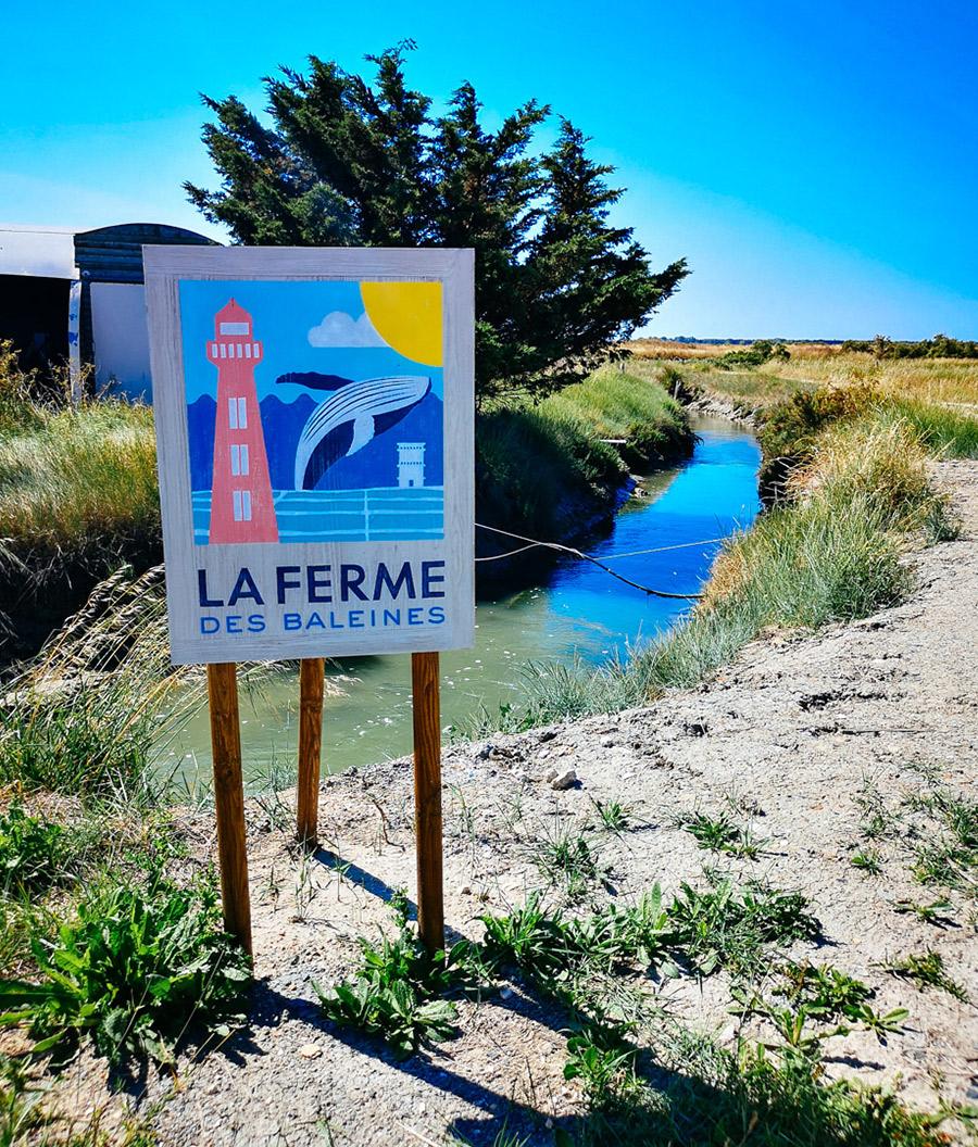 "granja de ostras, la ""Ferme des Baleines"""