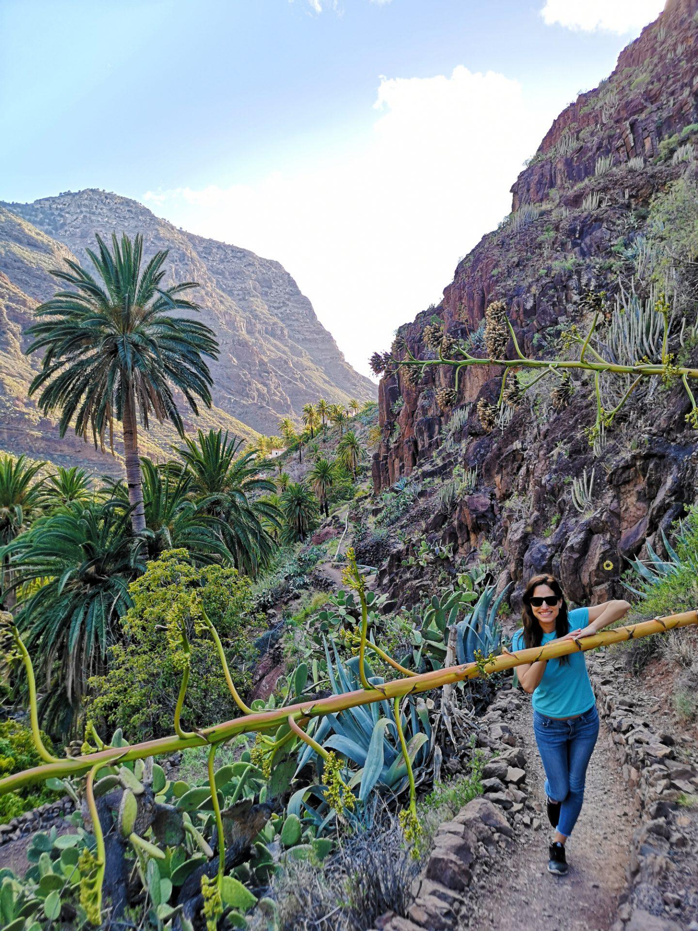 Ruta Barranco de los Ancones